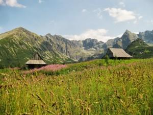 Dolina Gąsienicowa fot. Tomasz Sikorski