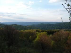 Widok z Magury Stuposianskiej