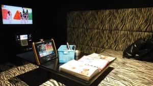 Pokój z Karaoke, można się wyżyć muzycznie
