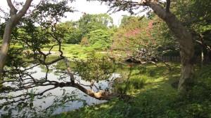 Ogród w kompleksie cesarskim