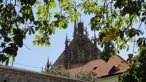 Katedra w Brnie